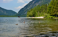 Beach and a few ducks at Lake Almsee