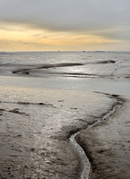 Chalkwell to Leigh- evening mudflats 2